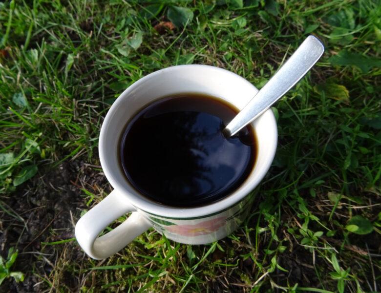 Free Coffee am Meer und Tee satt in Leer